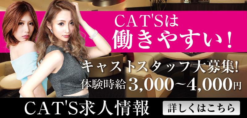 CAT'S求人
